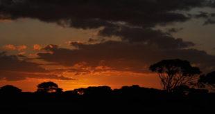 Sunrise in Amboseli National Park, Kenya, East Africa