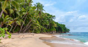 Mauritius: Bald auch Paradies für Blockchain-Unternehmen?