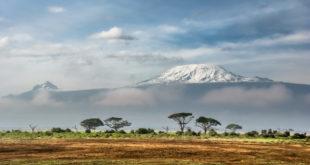 Weltbank unterstützt Blockchain-Anleihen in Kenia