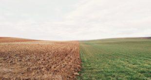 Ungewöhnliches Lebenszeichen von Vitalik Buterin