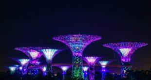 Währungsbehörde Singapur gibt weitere Details zum Projekt Ubin bekannt