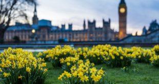 Britisches Wirtschaftsministerium: Kryptowährungen stellen geringes Risiko für Terrorismusfinanzierung dar