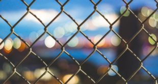Moldawien interessiert sich für Blockchain-Einsatz im Kampf gegen Kinderhandel
