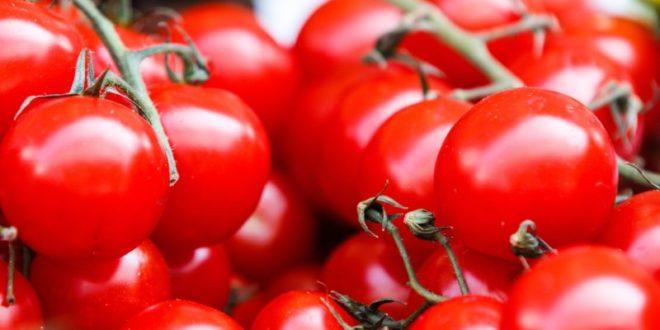 Krypto-Tomaten: Überschüssige Wärme wird für Anbau genutzt
