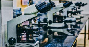 Wirrwarr um angebliche Aussagen von Wissenschaftler aus Quebec