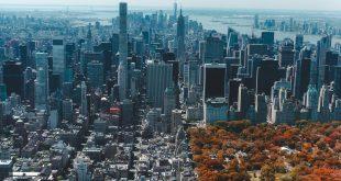 New York erlässt fünfte BitLicense für Genesis Global Trading